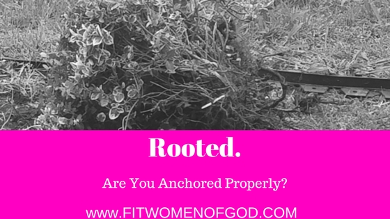Are You Anchored Properly?